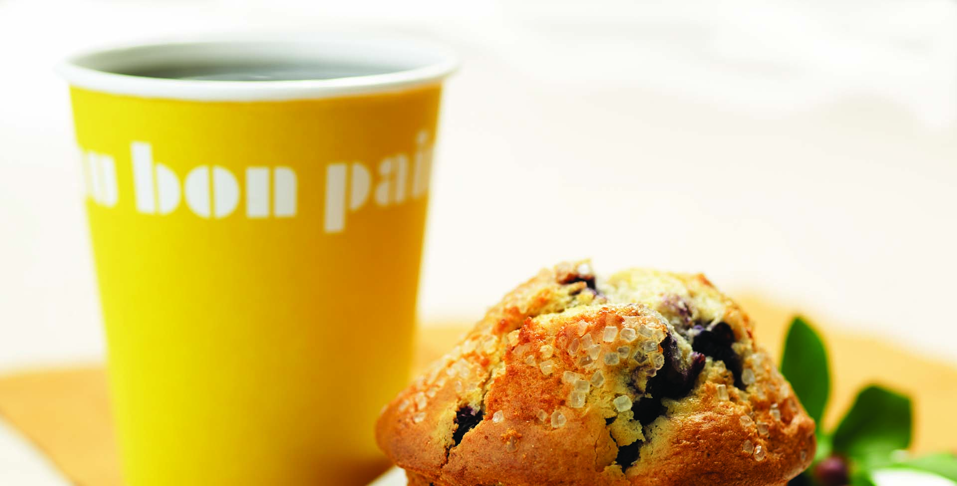 AU BON PAIN Muffin and Coffee