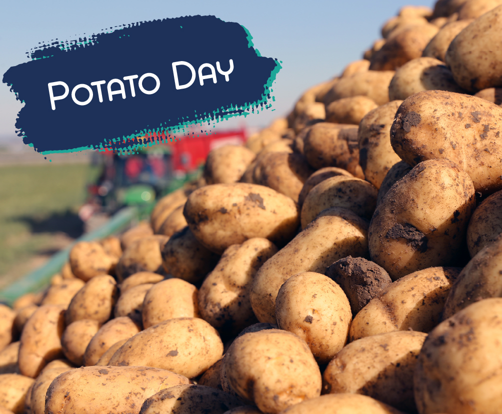 Potato Day